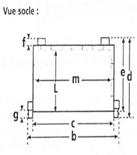 кактус гироскутер